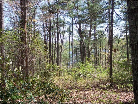 Lot 2 Panther Ridge Road