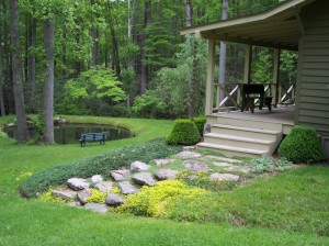 Picture Perfect Pond Setting